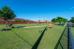 One Bedroom Apartments for Rent in Katy, TX - Dog Park