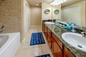 Three Bedroom Apartments for Rent in Katy, TX - Model Bathroom (2)