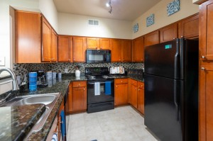 Three Bedroom Apartments for Rent in Katy, TX - Model Kitchen