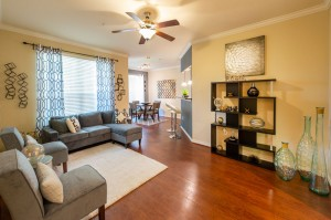 Three Bedroom Apartments for Rent in Katy, TX - Model Living Room & Dining Room (2)