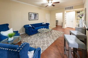 Three Bedroom Apartments for Rent in Katy, TX - Model Living Room (2)